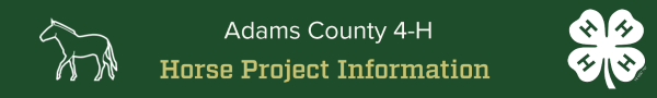 Horse Project Information