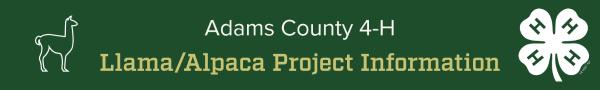 Llama/Alpaca Project Information