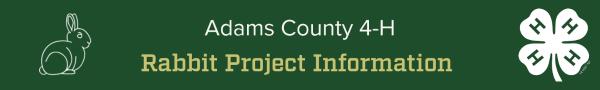 Rabbit Project Information