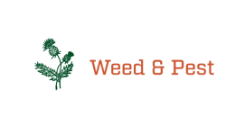 Weed & Pest