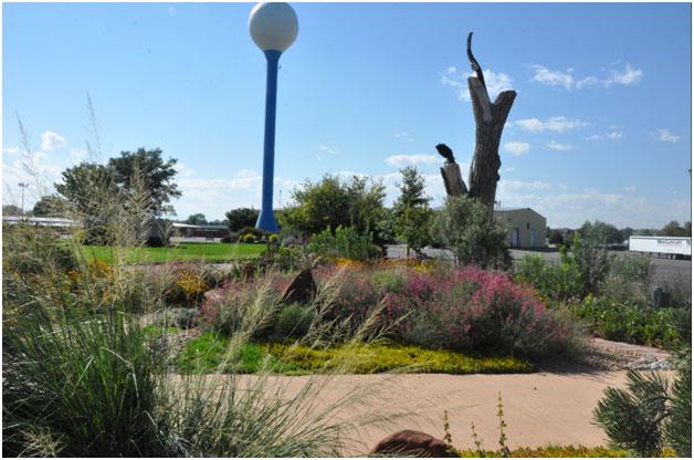 Adams County Xeric Garden